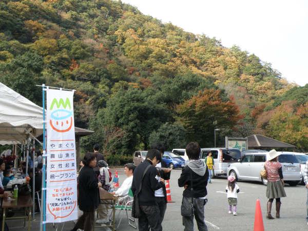 yamami 3